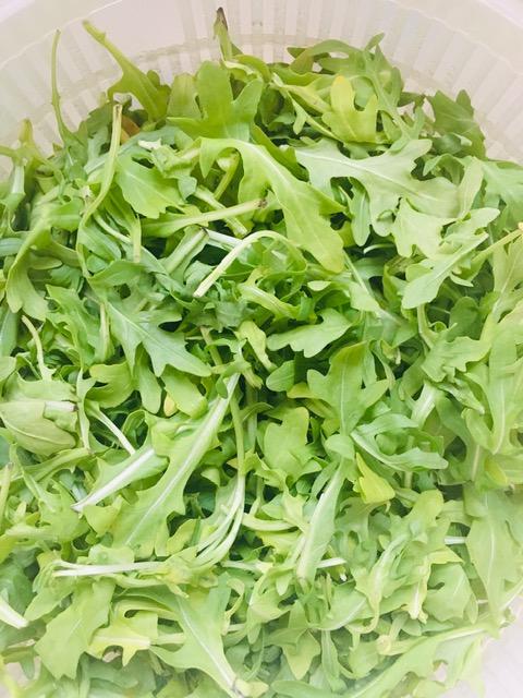 arduous-arugula-pesto-recipe-bridge-to-hope-img-1